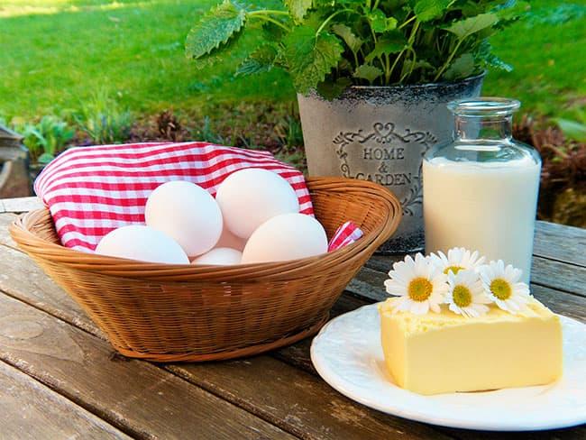 Leche animal. Alimentos elaborados con leche.