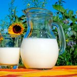 Leche vegetal vs leche animal