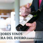 5 Mejores vinos Ribera del Duero 2020