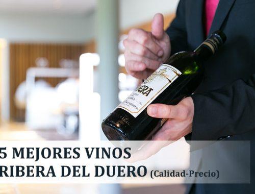 Mejores vinos Ribera del Duero