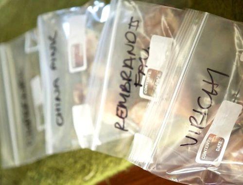 Bolsas zip para conservar alimentos