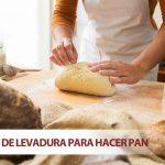 Tipos de levadura para hacer pan. ¿Qué es y cuál es la mejor para hacer pan?